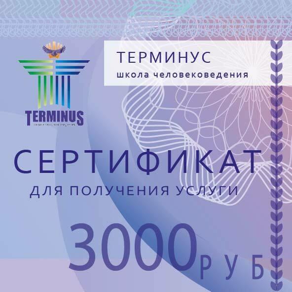 ТЕРМИНУС сертификат 3000