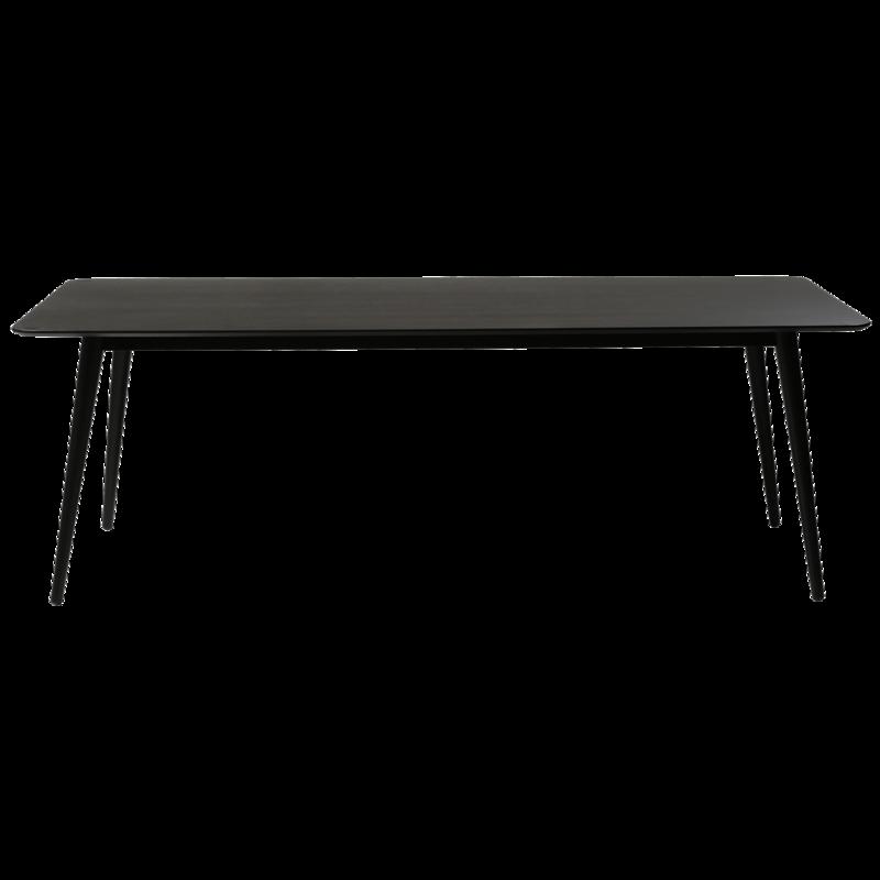 Pheno Rectangular Dining Table