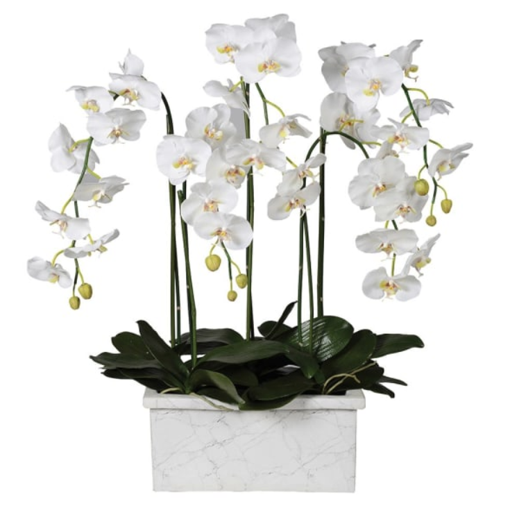 Orchid & White Marble Pot