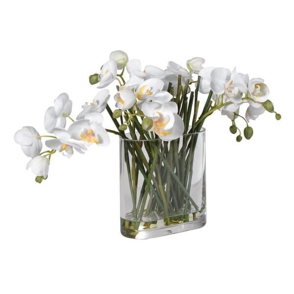 White Orchid in Glass Oblong Vase