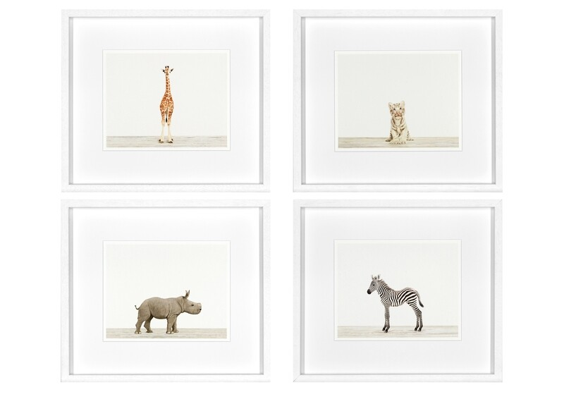 Animal Prints II