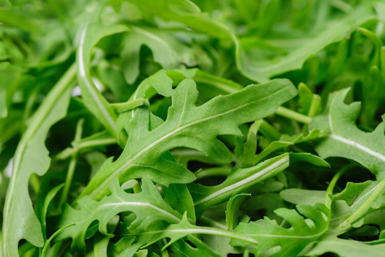 Rucola (sacchetto 200 grammi)