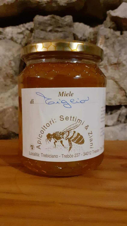 Miele di tiglio (vasetto 500 g)