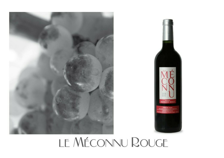 Le Méconnu Rouge 2019 carton de 6 bouteilles