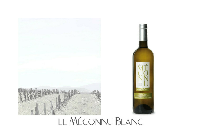 Le Méconnu Blanc 2020 carton de 6 bouteilles