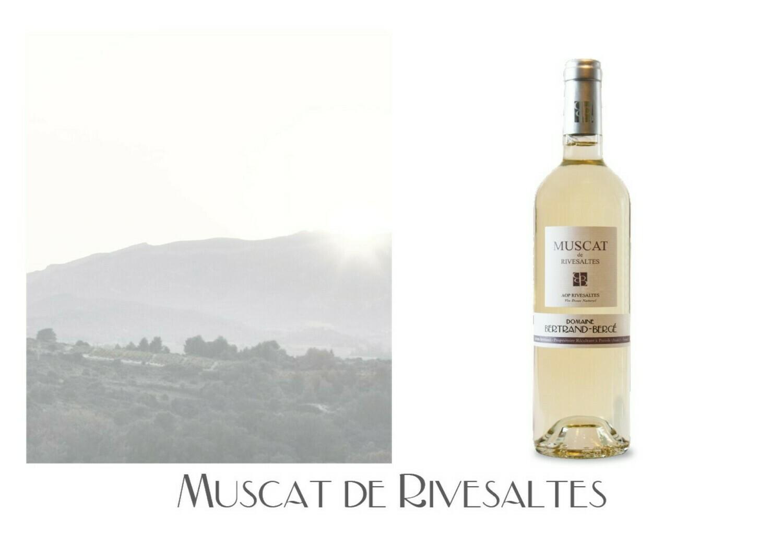 Muscat de Rivesaltes 2019 carton de 6 bouteilles