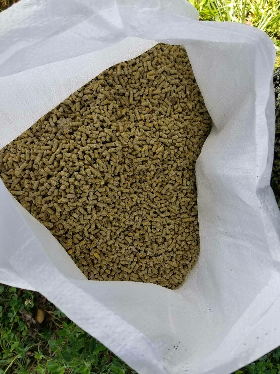 Flowering Pear Poultry Layer Feed 19% protein. Pellets
