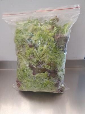 Leafy Substance Lettuce