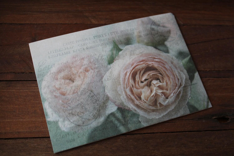 Postkarten Karton