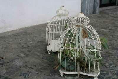 Vogelkäfig quadratisch gefüllt