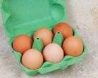 Eieren (6x)