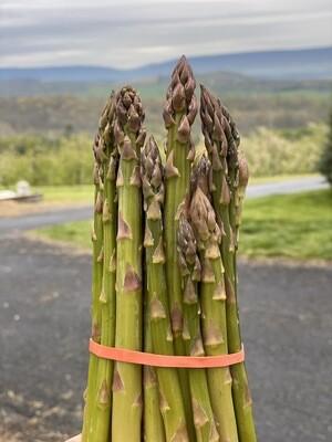 Fresh-Picked Wild Asparagus