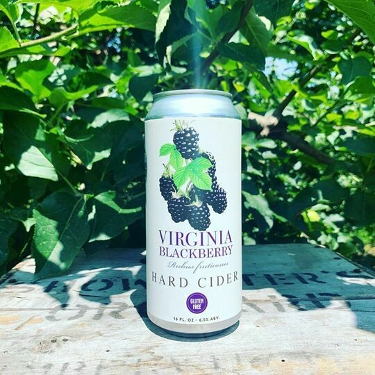 Virginia Blackberry 4-Pack of 12-Ounce Cans