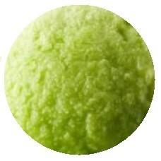 Lime Sorbet 1 Liter