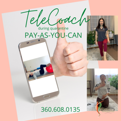 TeleCoach Pay-as-You-Can