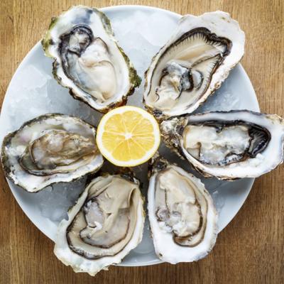 Live Oysters 1 dozen