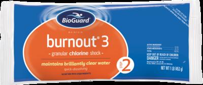 BurnOut 3 Maintain (1# Bag)