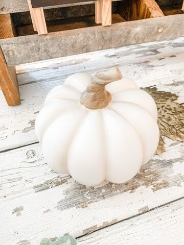 Resin Pumpkin S