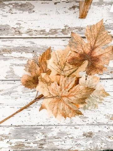 Maple Leaf Pick
