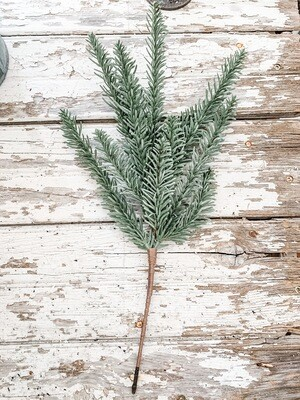 Fir Tip Stem