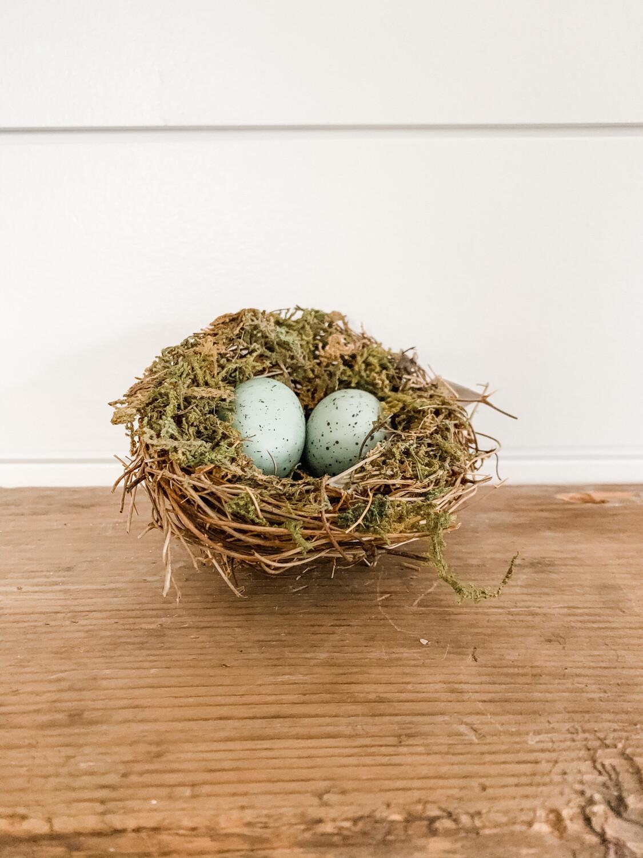 Robins Egg Nest