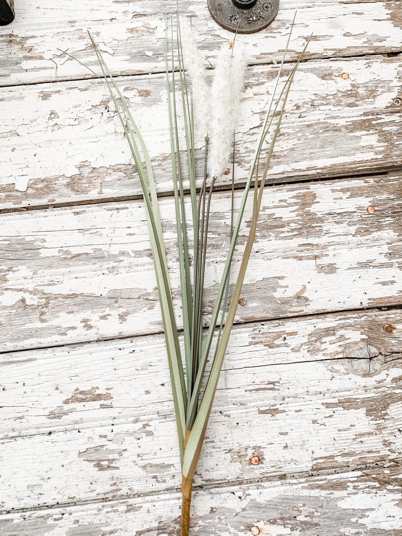 Sea Grass Stem