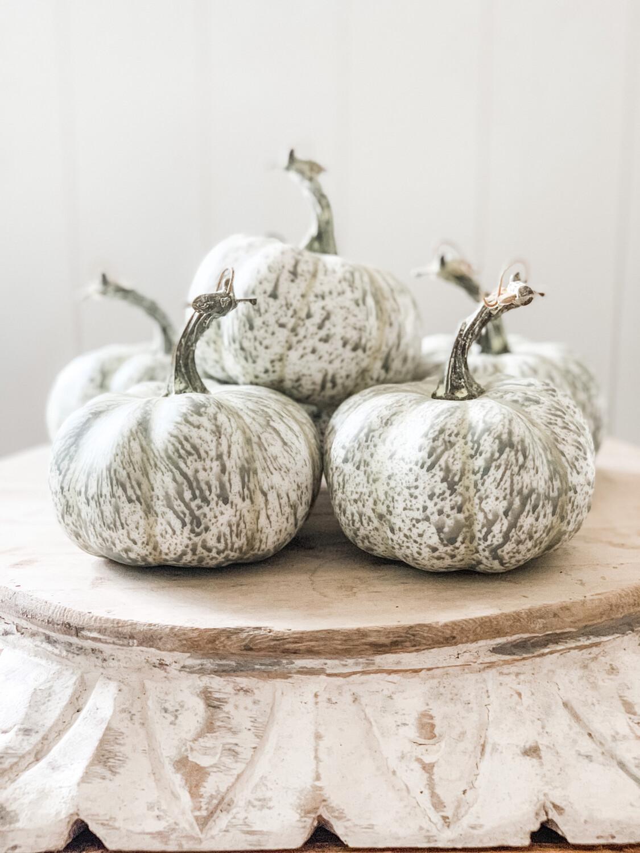 Fall's Flush Pumpkin S