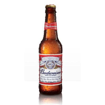 Bottle Budweiser