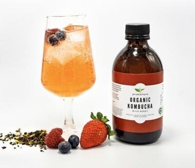 Kombucha - Wild Berry