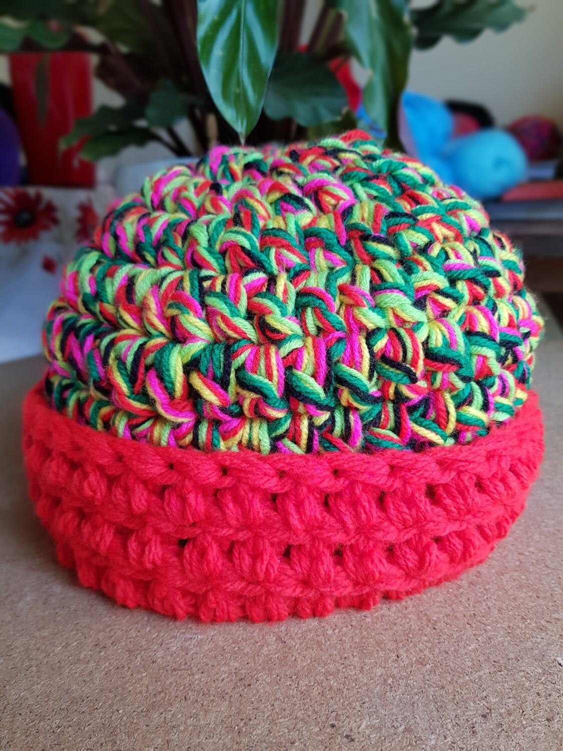 Lime Green, Pink and Red Surprise Chunky Beanie - Adult Unisex