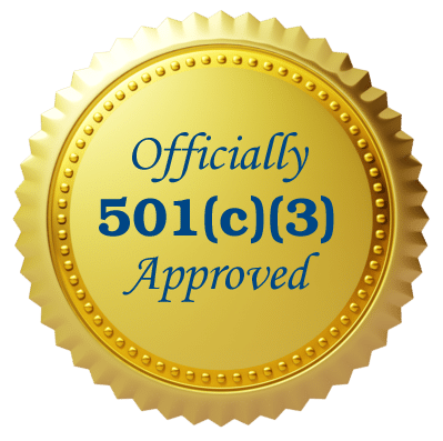 I've Got My 501c3 Now What (Workshop Series)
