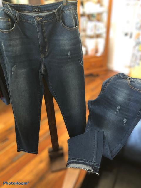 Skinny Stretch Jean- Plus