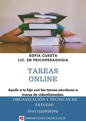Sofía Cuesta Tareas Online