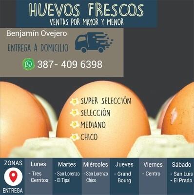 Benjamín Ovejero Huevos
