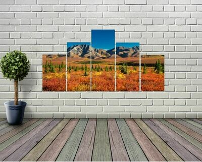 Denali National Park (5-panel Wall Art)