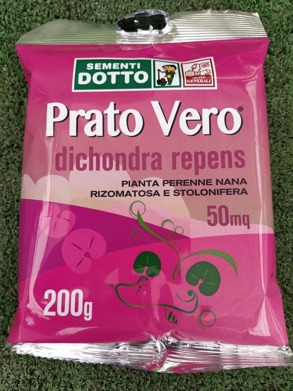 BUSTA PRATO VERO Dicondra REPENS 100 gr