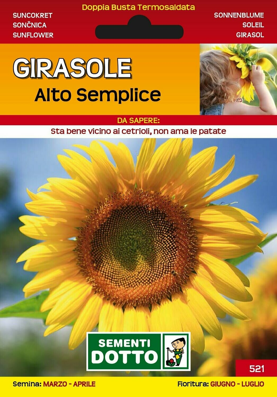 GIRASOLE ALTO SEMPLICE BUSTA SEMI