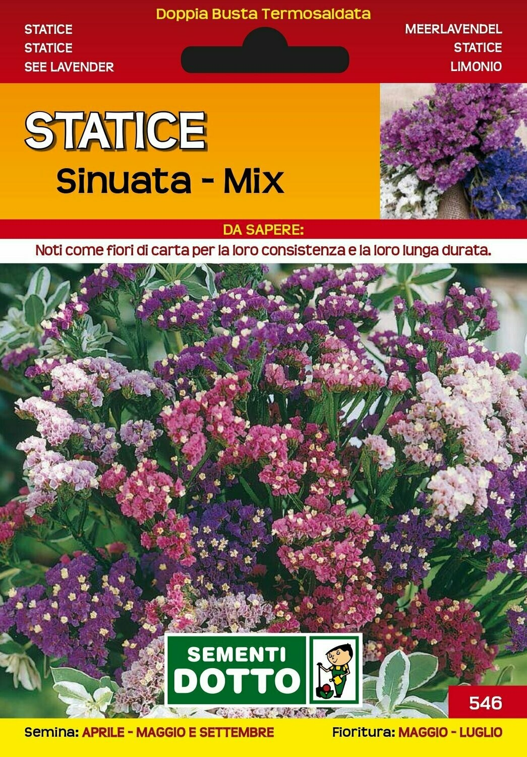 STATICE SINUATA MIX BUSTA SEMI
