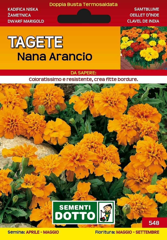TAGETE NANA ARANCIO BUSTA SEMI