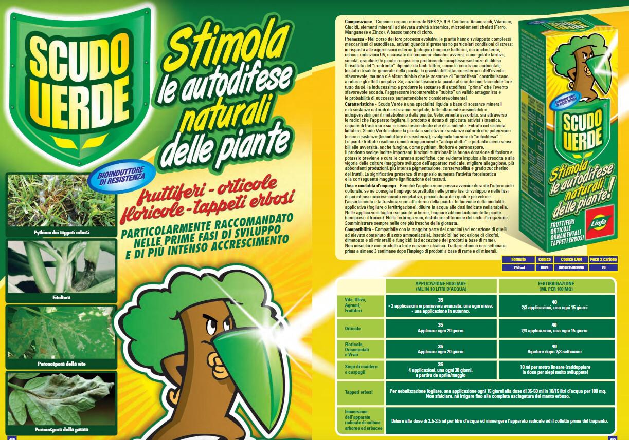Scudo Verde