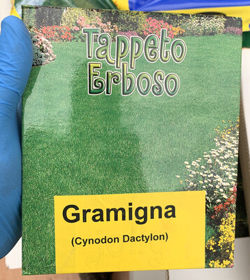 Seme di Gramigna 0,5 kg  Cynodon Dactylon SEMENTI SEMENZA