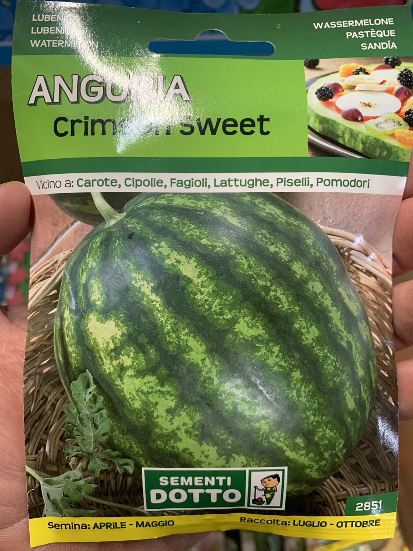 Anguria crimson sweet BUSTA SEMI