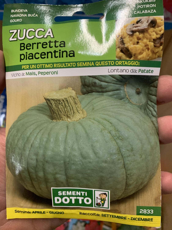Zucca Berretta Piacentina BUSTA SEMI
