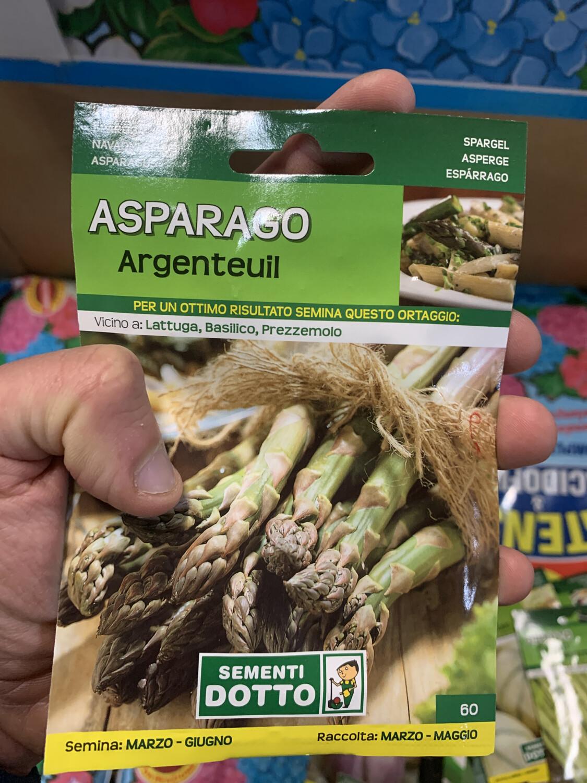 Asparago asparagi argentuil BUSTA SEMI