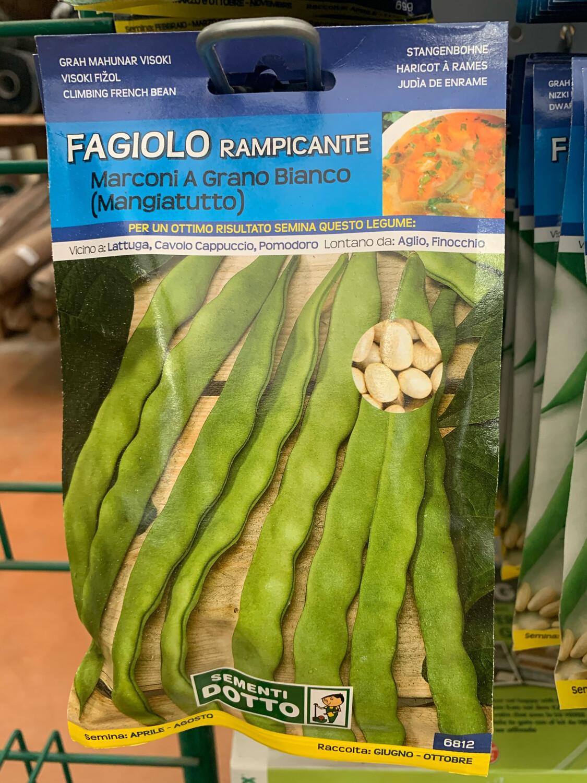 Fagiolino Rampicante Marconi 95 grammi BUSTA SEMI
