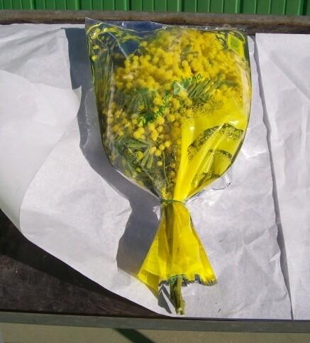Mazzo Mimosa 100 Grammi