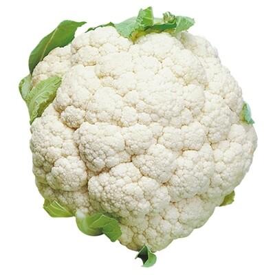 CAVOLO CAVOLFIORE BIANCO MEDIO TARDIVO - Brassica oleracea var. botrytis - conf. ORTO 8pz