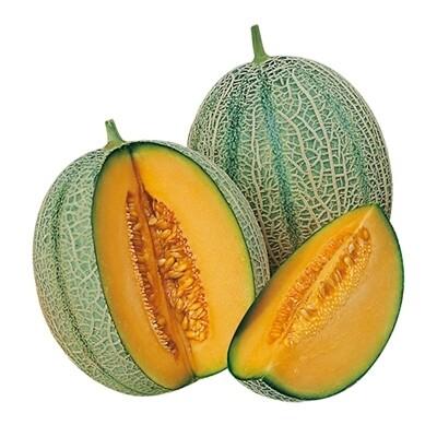 MELONE RETATO - Cucumis melo - conf. ORTO 4pz