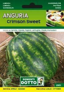 ANGURIA CRIMSON SWEET - Citrullus lanatus - busta semi