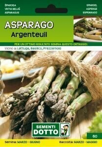 ASPARAGO / ASPARAGI ARGENTEUIL - Asparagus officinalis - busta semi